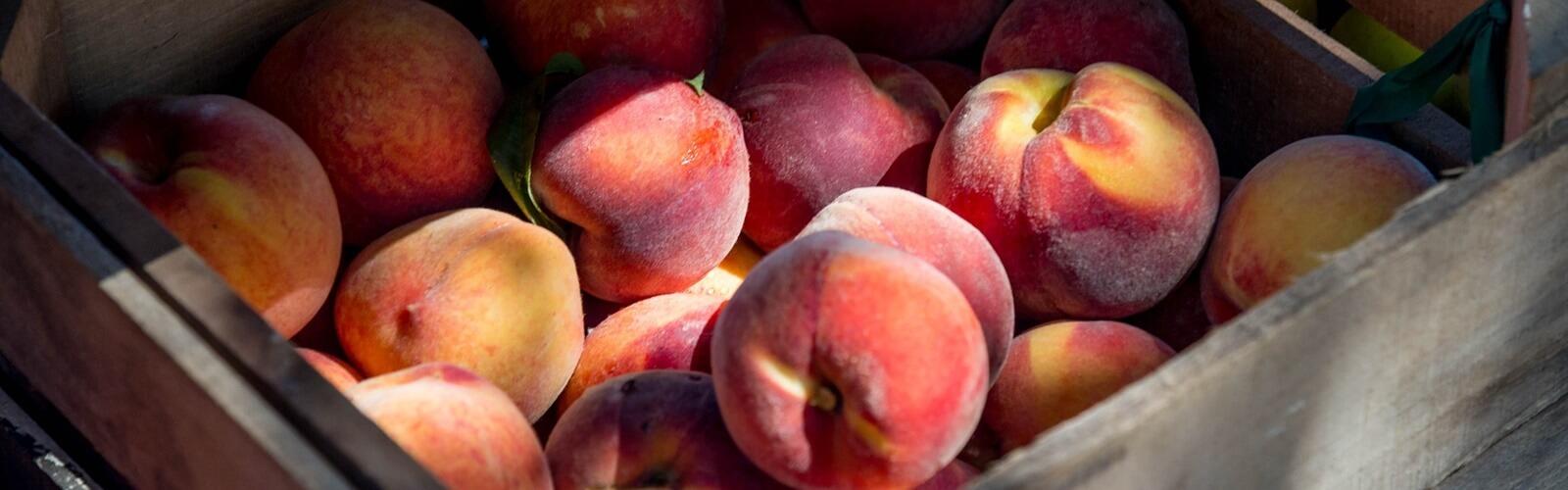 Peach bucket
